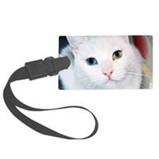 cat 1 Luggage Tag