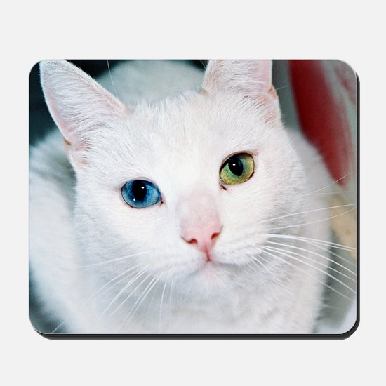 cat 1 Mousepad