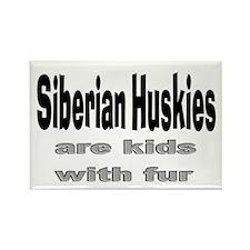 Siberian Huskies Rectangle Magnet