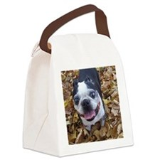 BT Lvs ipad Canvas Lunch Bag