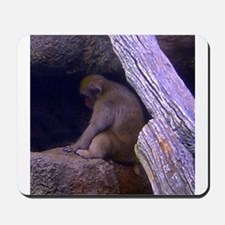 japanese macaque Mousepad