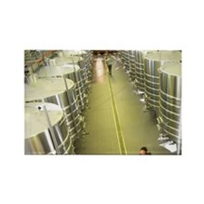 The brand new winery (cuverie) wi Rectangle Magnet
