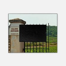 An iron gate to the vineyard Clos Pi Picture Frame
