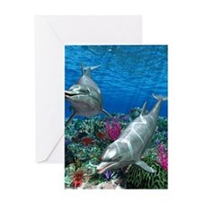 oceanworld_368_V_F Greeting Card