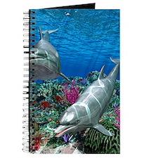 oceanworld_368_V_F Journal