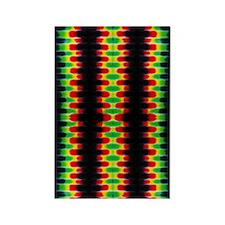 10x16_rastaStripesTD4 Rectangle Magnet