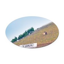 Vineyards in the Cote Rotie distri Oval Car Magnet