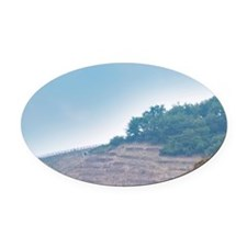 Terraced vineyards in the Cote Rot Oval Car Magnet