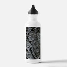 Czech Republic, Ceske  Water Bottle
