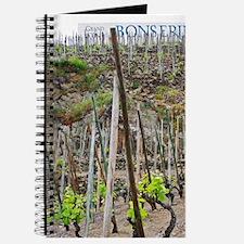 Terraced vineyards in the Cote Rotie distr Journal