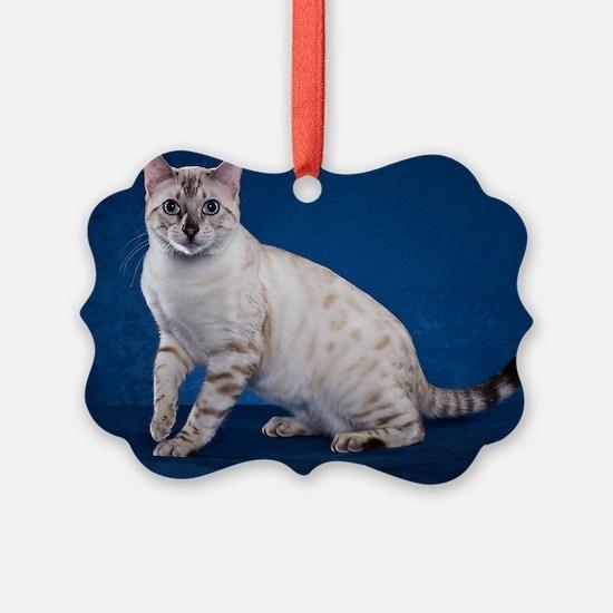Bengal6 Ornament