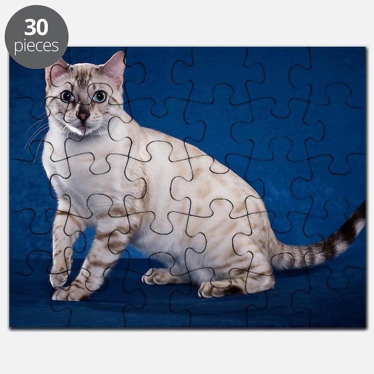 Bengal6 Puzzle