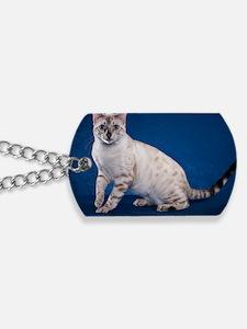Bengal6 Dog Tags