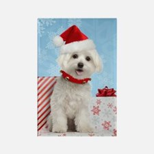 maltesechristmasfront Rectangle Magnet