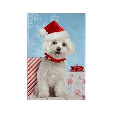 Maltese Christmas Card Rectangle Magnet