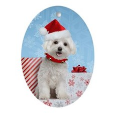 Maltese Christmas Card Oval Ornament