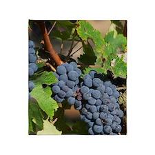A cabernet Sauvignon vine, circa 35  Throw Blanket
