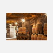 The underground winery and cellar Rectangle Magnet