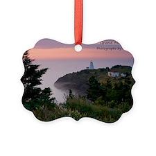 cover-generic-image copy Ornament