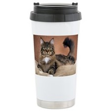 _DSC8422 Thermos Mug