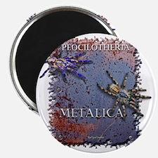 FINALMALEFEMALPOKIEADJUSTED3morecolorbackgr Magnet