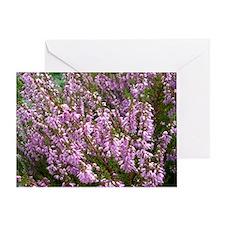 purple heather - wide version Greeting Card
