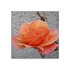 "coral rose - squared off Square Sticker 3"" x 3"""
