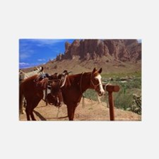 Saddled Horse Rectangle Magnet