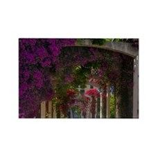 Corsica. Flowers in bloom on arbo Rectangle Magnet