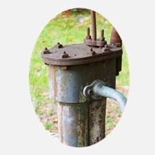 A water pump in the court yard. Chat Oval Ornament