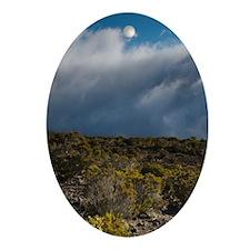 Landscape on Piton Maido Peak (el.22 Oval Ornament