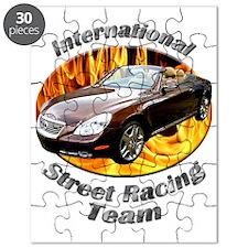 cat0car45bg41ut11lt31 Puzzle
