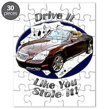 cat0car45bg59ut53lt54 Puzzle