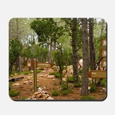 Piana. Multiple hikes available in Foret Mousepad