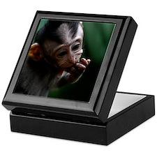 BabyMonkey Keepsake Box