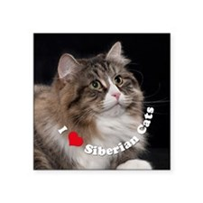 "Misha large button template Square Sticker 3"" x 3"""