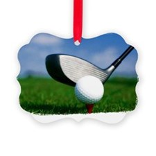 golf tee Picture Ornament
