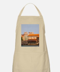 Our lady of the angels. With its emblematic  Apron
