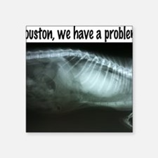 "Houston We have a problem Square Sticker 3"" x 3"""