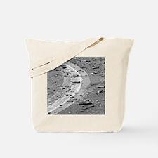 shellsMP Tote Bag