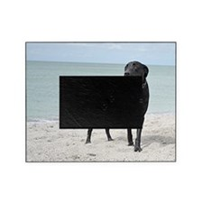 Black Labrador Picture Frame