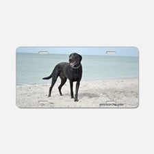 Black Labrador Aluminum License Plate