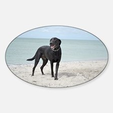 Black Labrador Decal