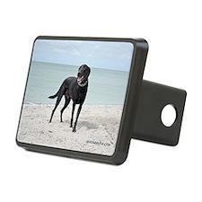 Black Labrador Hitch Cover