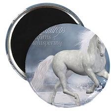 white_unicorn_stadium_blanket_h_front Magnet