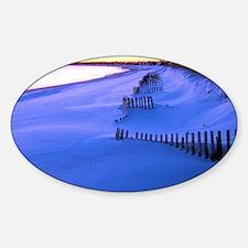 January Beach 015 Decal