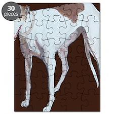 SQ Greyhound Puzzle