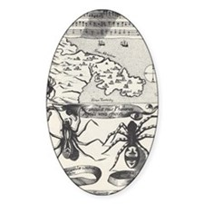 Medieval Map Music and Spiders Decal