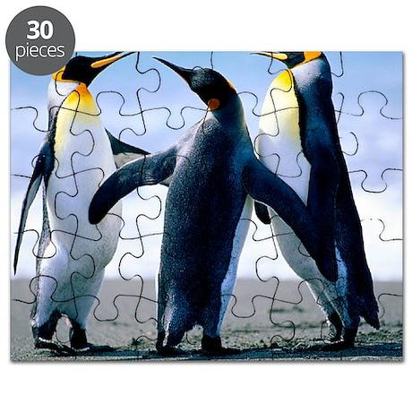 Penguins - Copy Puzzle