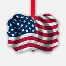usflag Picture Ornament